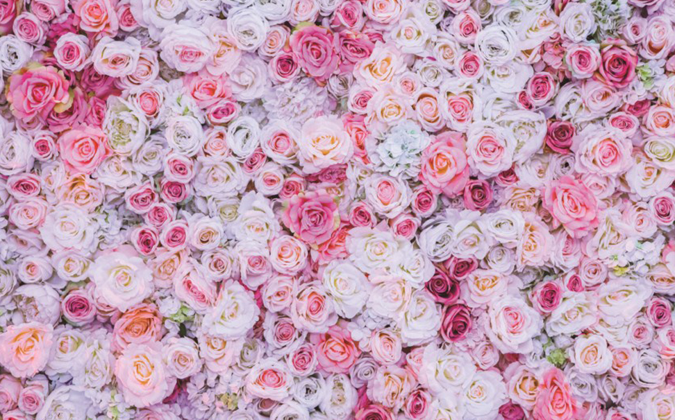 A beautiful overlay of pink, peach & white roses - Marshalls