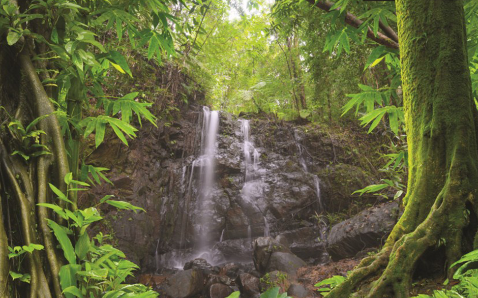 A magnificent view of waterfall in tropical forest - Marshalls