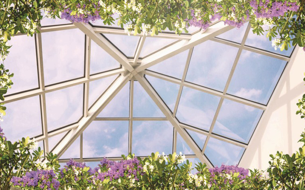Ceiling with plants, colorful flowers, the blue sky and the sunshine - Marshalls
