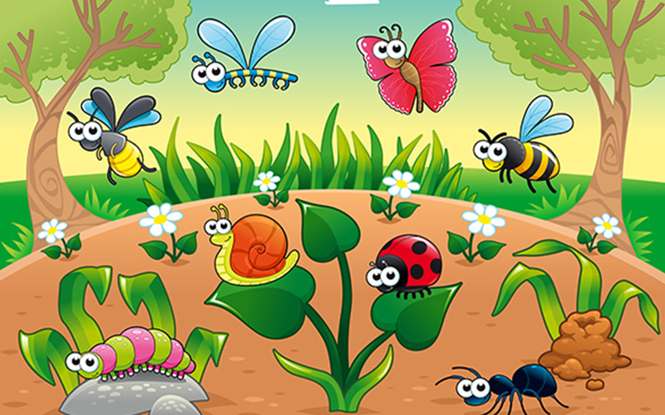Cartoon Butterfly Wallpapers for kids - Marshalls