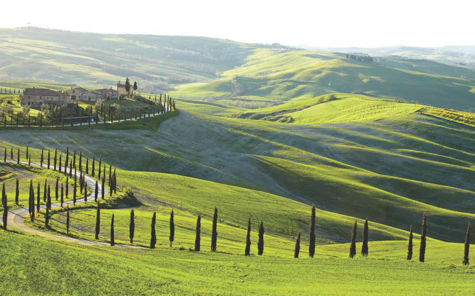 A picturesque view of vast greenery, Tuscany, Italy wallpaper - Marshalls
